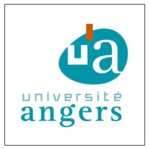 Master Métier des Archives à l'Université d'Angers