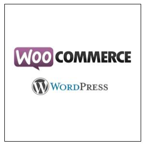 Experte WordPress et Woo Commerce